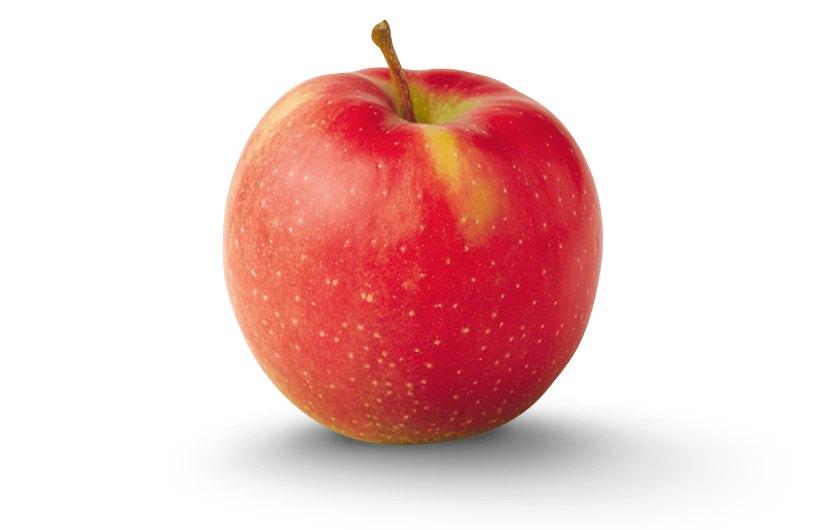 Apple Fruit Grading Solutions - Marshharrier